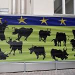 Landesregierung Graz, rechte Hand von Mag. Peter Manhal